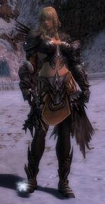Jora Armor Deldrimor Front