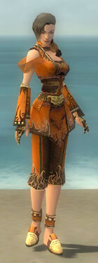 Monk Deldrimor Armor F dyed front