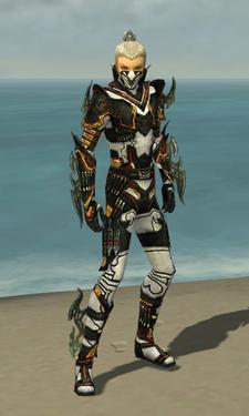 Assassin Elite Kurzick Armor M dyed front
