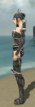 Necromancer Elite Profane Armor F gray side
