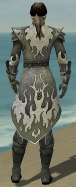 Elementalist Elite Flameforged Armor M gray back
