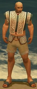 Monk Tyrian Armor M gray chest feet front