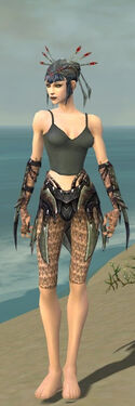 Necromancer Elite Cabal Armor F gray arms legs front