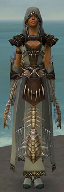 Dervish Primeval Armor F gray front