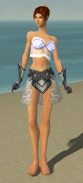 Elementalist Stormforged Armor F gray arms legs front