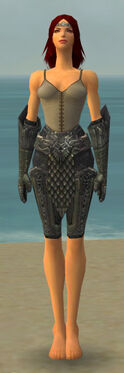 Warrior Elite Platemail Armor F gray arms legs front