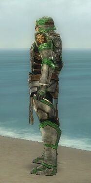 Warrior Sunspear Armor M dyed side