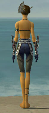 Assassin Norn Armor F gray arms legs back