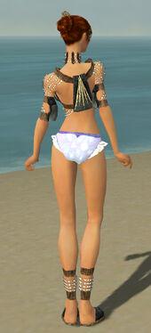 Elementalist Sunspear Armor F gray chest feet back