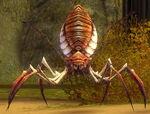 GiantNeedleSpider