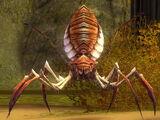 Giant Needle Spider
