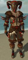 Ritualist Norn Armor M gray front