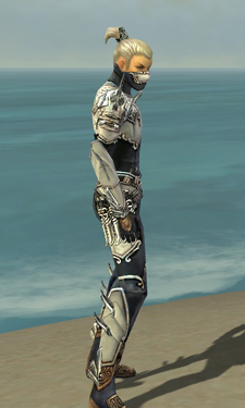 Assassin Asuran Armor M dyed side