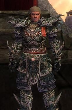 Warrior Elite Luxon Armor M nohelmet
