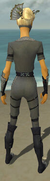 Assassin Shing Jea Armor F gray back