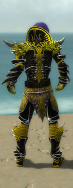 Necromancer Elite Luxon Armor M dyed back