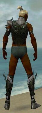 Assassin Elite Luxon Armor M gray chest feet back