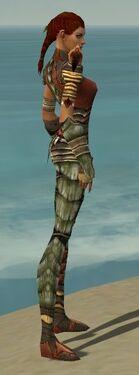Ranger Elite Drakescale Armor F gray side