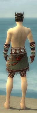 Ritualist Elite Exotic Armor M gray arms legs back