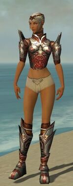 Warrior Asuran Armor F gray chest feet front