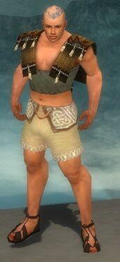 Monk Sunspear Armor M gray chest feet back