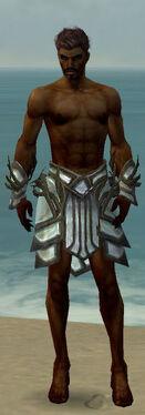 Paragon Primeval Armor M gray arms legs front