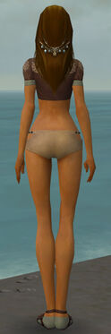 Dervish Sunspear Armor F gray chest feet back