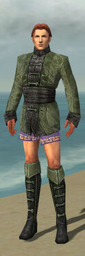 Mesmer Shing Jea Armor M gray chest feet front