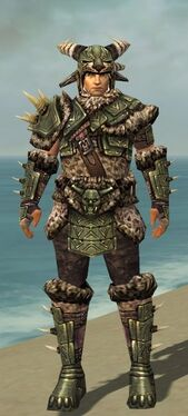Warrior Elite Charr Hide Armor M gray front
