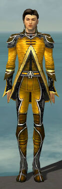 Elementalist Shing Jea Armor M dyed front