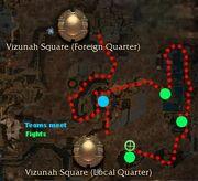 Vizunah square foreign