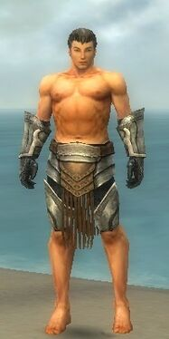 Warrior Sunspear Armor M gray arms legs front