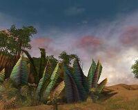 Plains of Jarin