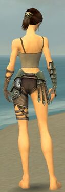 Warrior Elite Gladiator Armor F gray arms legs back