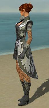 Elementalist Elite Flameforged Armor F gray side