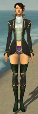 Mesmer Tyrian Armor F gray chest feet front