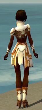 Paragon Asuran Armor F dyed back