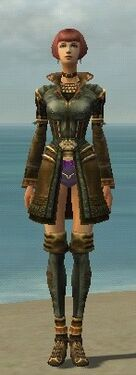 Mesmer Ancient Armor F gray chest feet front