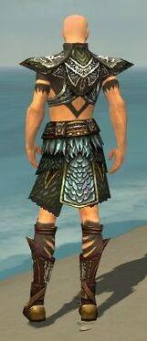 Ritualist Deldrimor Armor M gray back