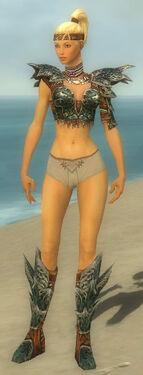 Warrior Luxon Armor F gray chest feet front