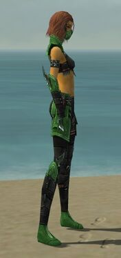 Assassin Luxon Armor F dyed side
