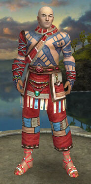 Monk Luxon Armor M dyed front