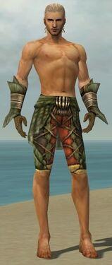 Ranger Elite Drakescale Armor M gray arms legs front