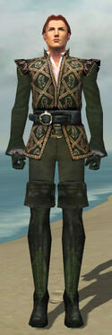 Mesmer Courtly Armor M gray front