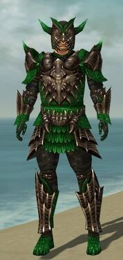Warrior Elite Dragon Armor M dyed front