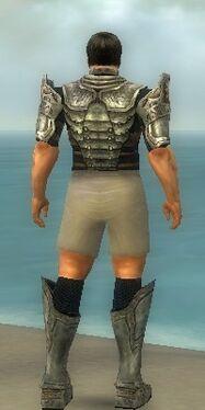 Warrior Sunspear Armor M gray chest feet back