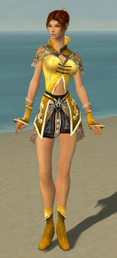 Elementalist Shing Jea Armor F dyed front