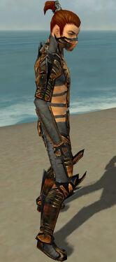 Assassin Elite Exotic Armor M gray side