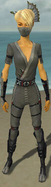 Assassin Shing Jea Armor F gray front