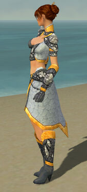 Elementalist Stoneforged Armor F dyed side